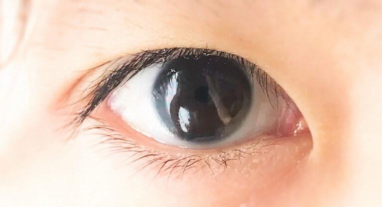 目の仕組みについて